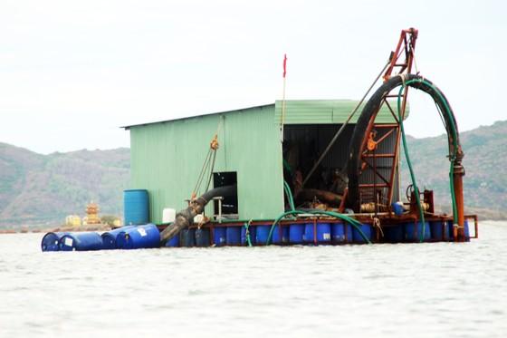 Bình Định chỉ đạo khẩn trương làm rõ trách nhiệm doanh nghiệp hút cát ở đầm Thị Nại ảnh 1