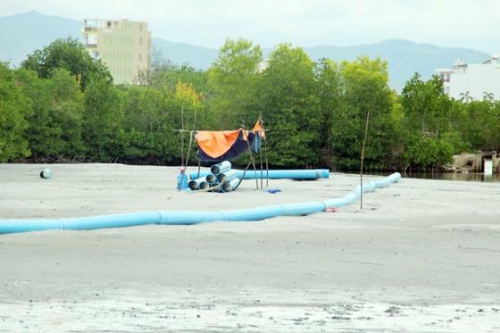 Tận dụng 300.000m3 vật chất nạo vét san lấp dự án biệt thự đầm Thị Nại ảnh 2