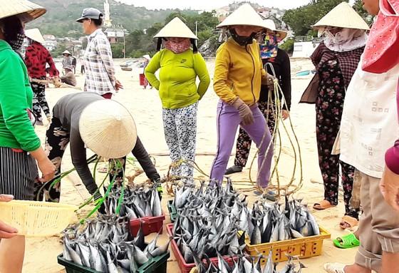 Biển gần bờ xuất hiện nhiều đàn cá, ngư dân Bình Định trúng lớn ảnh 6