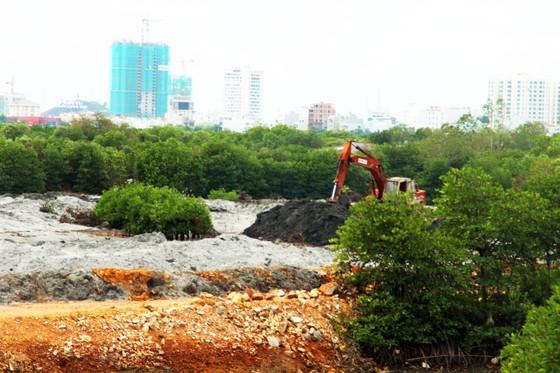 Thu hồi quyết định cho thuê đất, giao đất của Công ty CP Thị Nại Eco Bay ảnh 1