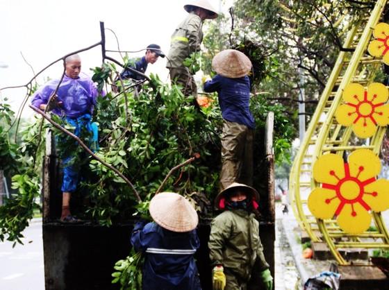 Dọn hàng ngàn tấn rác thải, khôi phục 2.000 cây xanh bị bão quật ngã ảnh 5