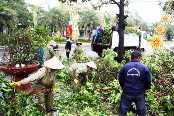 Dọn hàng ngàn tấn rác thải, khôi phục 2.000 cây xanh bị bão quật ngã ảnh 2
