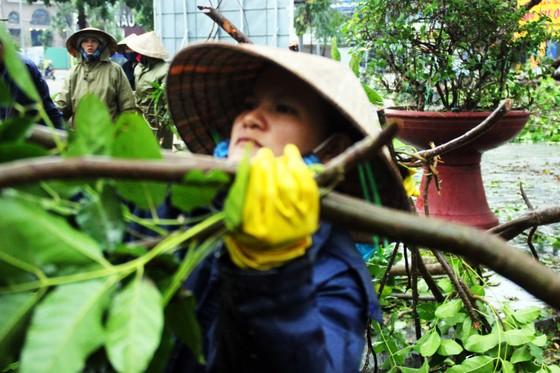 Dọn hàng ngàn tấn rác thải, khôi phục 2.000 cây xanh bị bão quật ngã ảnh 7