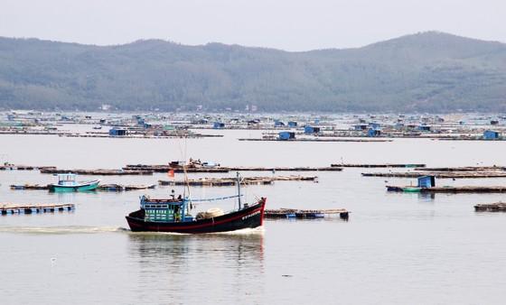 Các tỉnh miền Trung 'căng mình' chống bão số 6 ảnh 4