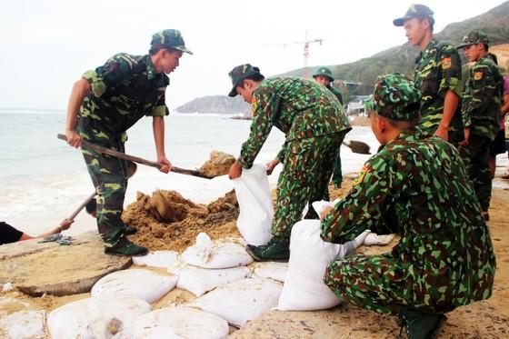 Tâm bão số 6 dự báo đổ bộ vào Bình Định, Phú Yên ảnh 6