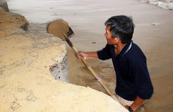 Tâm bão số 6 dự báo đổ bộ vào Bình Định, Phú Yên ảnh 3