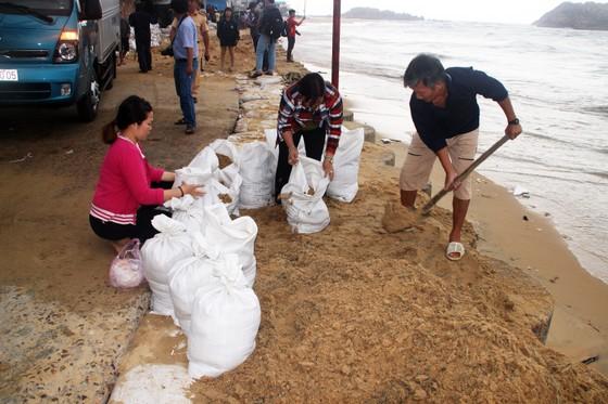 Tâm bão số 6 dự báo đổ bộ vào Bình Định, Phú Yên ảnh 4