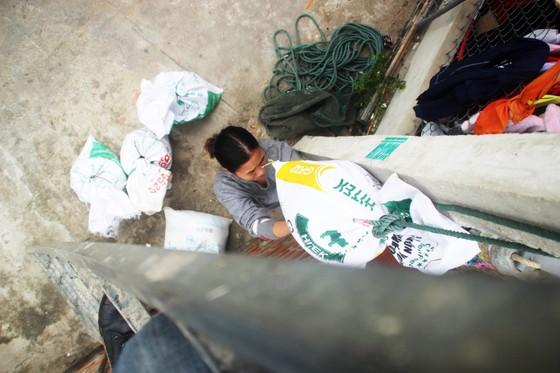 Tâm bão số 6 dự báo đổ bộ vào Bình Định, Phú Yên ảnh 14