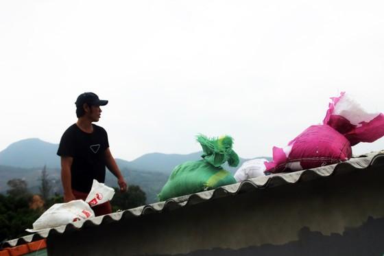 Tâm bão số 6 dự báo đổ bộ vào Bình Định, Phú Yên ảnh 16