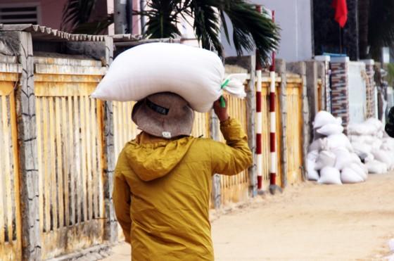 Tâm bão số 6 dự báo đổ bộ vào Bình Định, Phú Yên ảnh 8