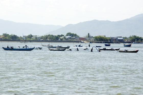 Cá ông lạc vào đầm Thị Nại, sa vào lưới vợ chồng đánh cá đêm ảnh 5
