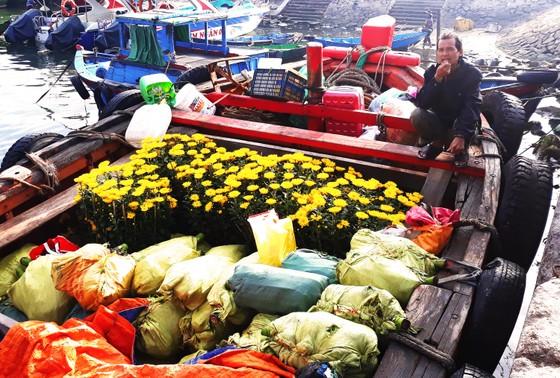 'Chở tết' ra đảo Cù Lao Xanh ảnh 1