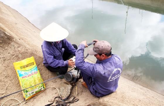 Thủy điện 'cứu hạn' cho hàng trăm hécta cây trồng ảnh 2