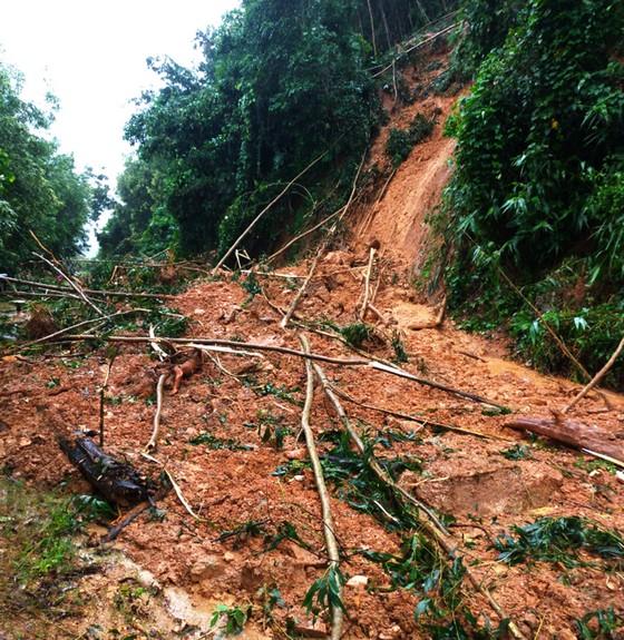 Bình Định báo cáo sự cố sạt lở tại Thủy điện Vĩnh Sơn 5 ảnh 4