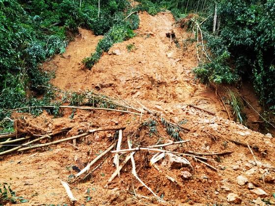 Cần đánh giá kỹ lưỡng tình trạng sạt lở tại huyện miền núi Vĩnh Thạnh, Bình Định ảnh 2