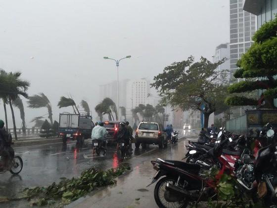 Những thiệt hại ban đầu của cơn bão số 12 ảnh 16