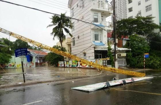 Những thiệt hại ban đầu của cơn bão số 12 ảnh 1