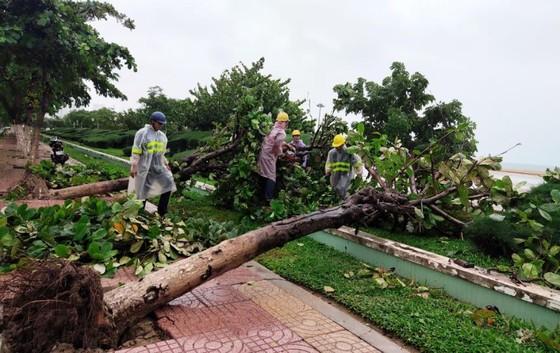 Những thiệt hại ban đầu của cơn bão số 12 ảnh 3