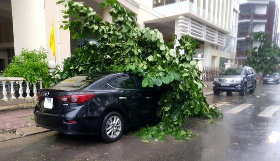 Những thiệt hại ban đầu của cơn bão số 12 ảnh 4