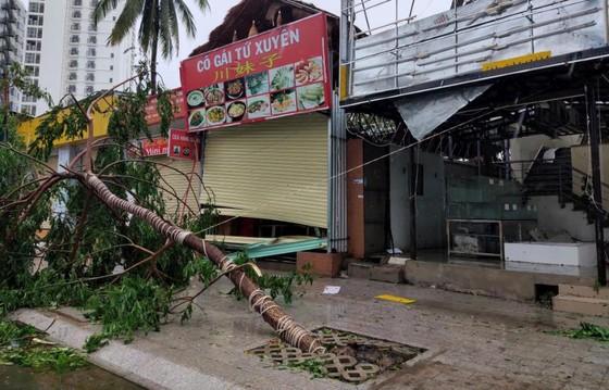 Những thiệt hại ban đầu của cơn bão số 12 ảnh 6
