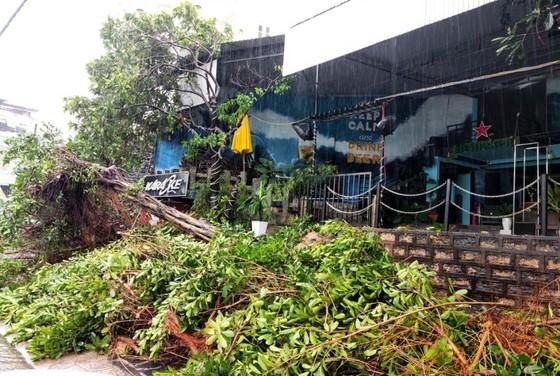 Những thiệt hại ban đầu của cơn bão số 12 ảnh 8