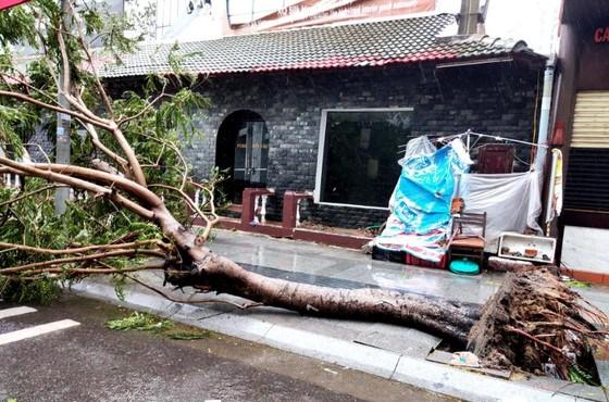 Những thiệt hại ban đầu của cơn bão số 12 ảnh 10