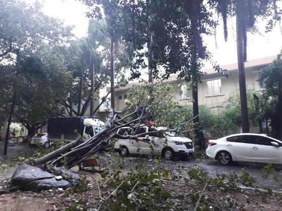 Những thiệt hại ban đầu của cơn bão số 12 ảnh 13
