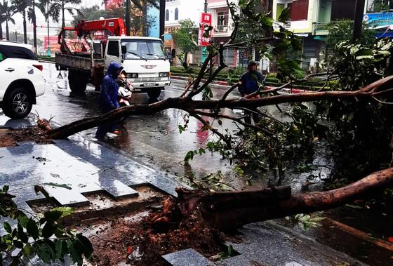 Những thiệt hại ban đầu của cơn bão số 12 ảnh 21