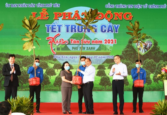 Thủ tướng muốn Phú Yên đi đầu đề án trồng mới 1 tỷ cây xanh ảnh 5