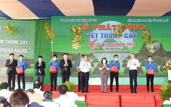Thủ tướng muốn Phú Yên đi đầu đề án trồng mới 1 tỷ cây xanh ảnh 6