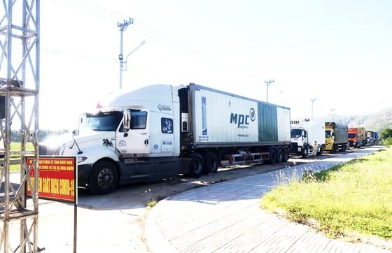 Bình Định khởi tố thêm vụ làm lây lan dịch Covid-19 liên quan đến tài xế xe tải ảnh 1