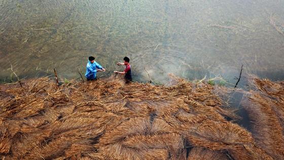 Bão suy yếu, người dân Quảng Ngãi đối diện với ngập lụt ảnh 5