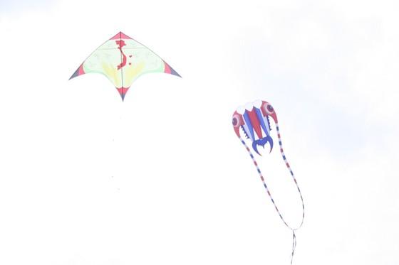Rực rỡ những cánh diều hè ảnh 11