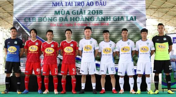 VPMilk luôn đồng hành bóng đá Việt Nam ảnh 4