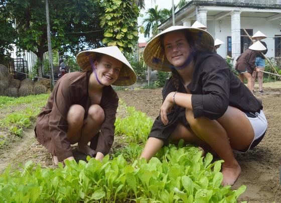Du lịch làm nông dân ảnh 4