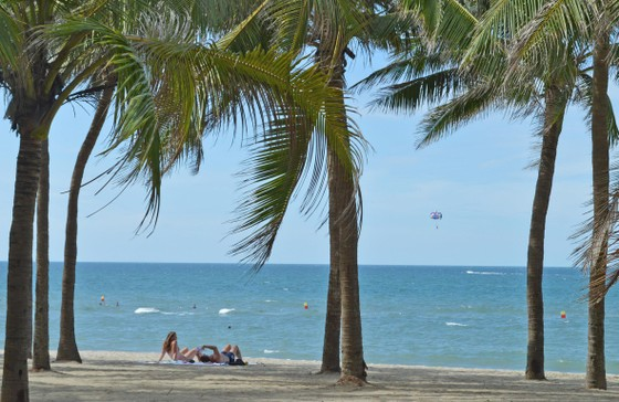 Đà Nẵng xây dựng kế hoạch đưa khách ra đảo Cù Lao Chàm ảnh 4