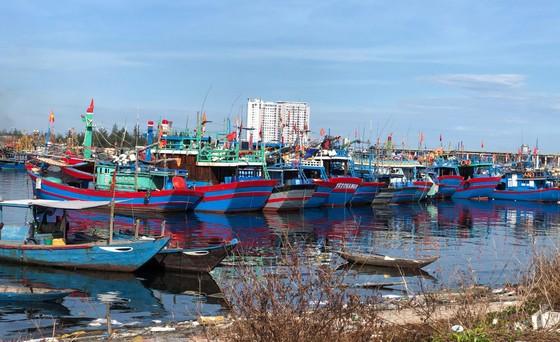 Ngăn chặn, chấm dứt tàu cá và ngư dân vi phạm vùng biển nước ngoài ảnh 3