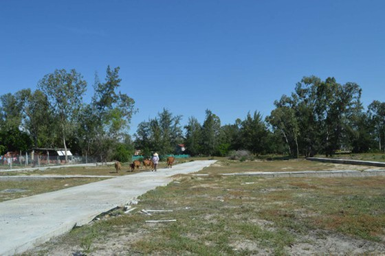 Khởi tố vụ án liên quan đến dự án đô thị Coco Green Home của Công ty Nhất Thành Nam ảnh 1