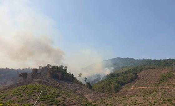 Kịp thời khống chế đám cháy rừng phòng hộ tại Quảng Nam ảnh 1