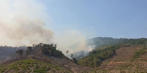 Đốt thực bì, cháy hơn 32 ha rừng phòng hộ tại Quảng Nam ảnh 2