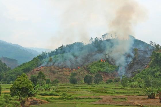 Đốt thực bì, cháy hơn 32 ha rừng phòng hộ tại Quảng Nam ảnh 3