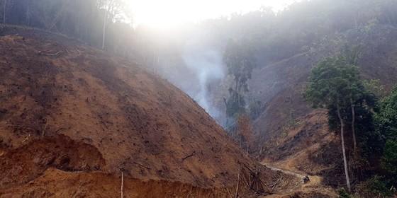 Đốt thực bì, cháy hơn 32 ha rừng phòng hộ tại Quảng Nam ảnh 1