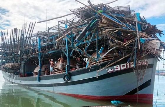 Quảng Nam điều tra vụ tàu hàng rời khỏi hiện trường sau khi đâm tàu câu mực ảnh 1