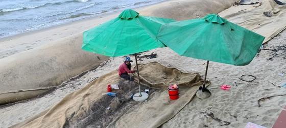 Quảng Nam khẩn trương gia cố kè Cửa Đại chạy bão ảnh 3