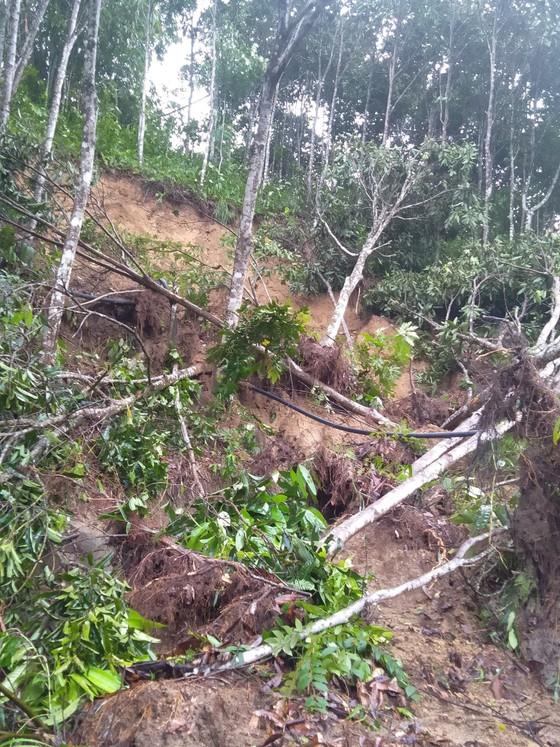 Ngân hàng nhà nước hỗ trợ người dân bị ảnh hưởng bão lũ khu vực miền Trung và Tây Nguyên  ảnh 3