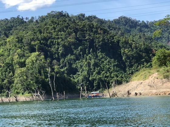 Đánh sập các hầm vàng trong phạm vi Vườn Quốc gia Sông Thanh ảnh 1
