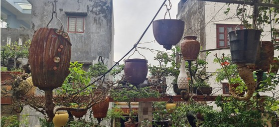 Khám phá vườn bonsai mọc ngược giữa phố ảnh 21