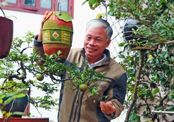Khám phá vườn bonsai mọc ngược giữa phố ảnh 12