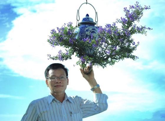 Khám phá vườn bonsai mọc ngược giữa phố ảnh 1