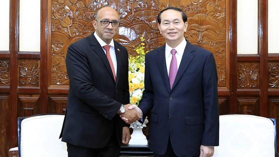 Chủ tịch nước Trần Đại Quang tiếp Đại sứ Cuba tại Việt Nam ảnh 1